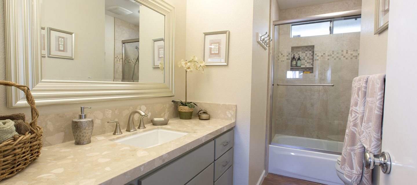 In the bathroom while taking a shower or a well deserved bubble bath - New Vanity Countertop